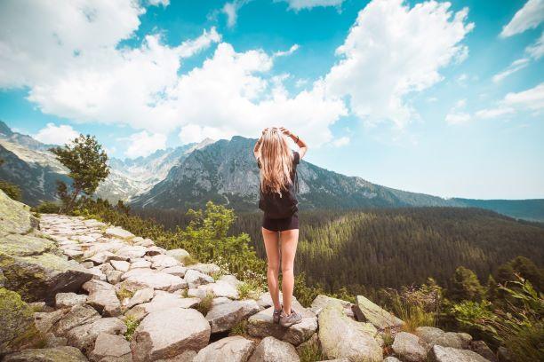 Panoramablick auf Berge und Wälder